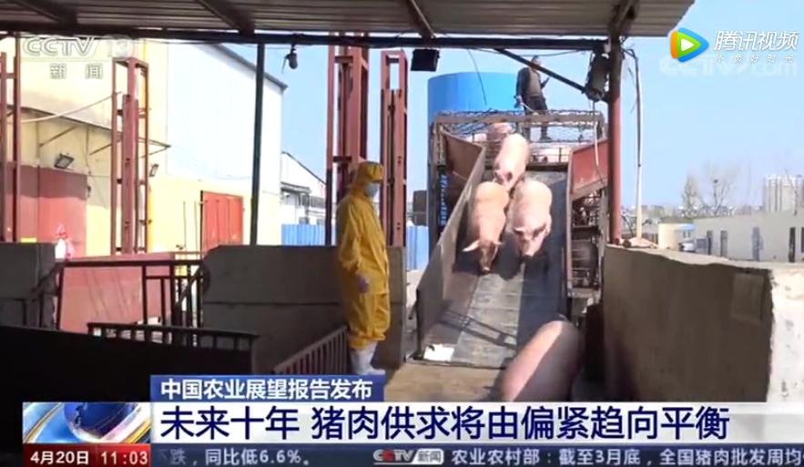 中国农业展望报告发布:未来十年 猪肉供求将由偏紧趋向平衡
