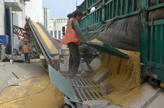 巴西大豆有望月底大量到港,中国进口格局生变