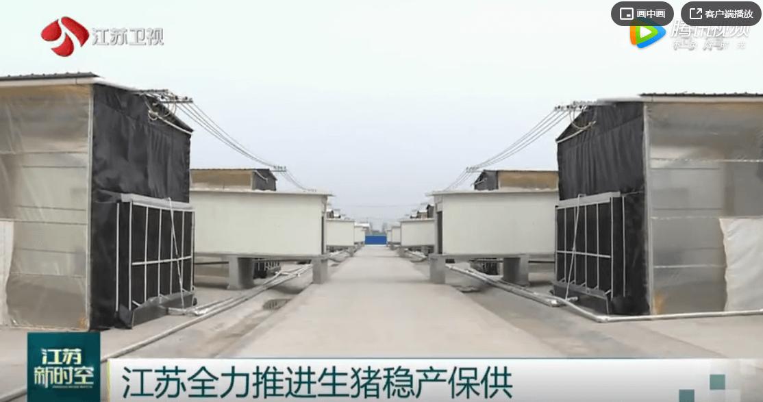 江苏全力推进生猪稳产保供 全省能繁母猪存栏连续6月回升