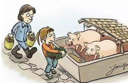 违法违规调运生猪谁受害?同为散小户,相煎何太急