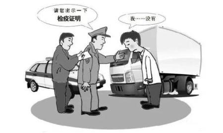 非法调运生猪怎么处罚?触及刑事犯罪或被判刑