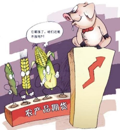 """二师兄""""咸鱼翻身""""止跌回升,论生猪期货对猪价的影响有多大"""