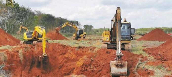 海南:洽谈到开工仅3个月 加速推进新希望生猪养殖项目