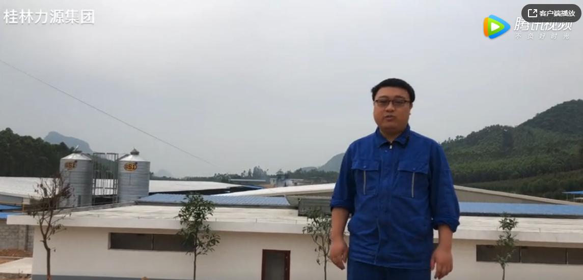 桂林力源集团:关于林碑种猪场的介绍