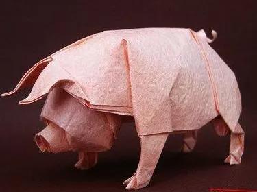 生猪期货提供套保工具 猪企扩张也疯狂