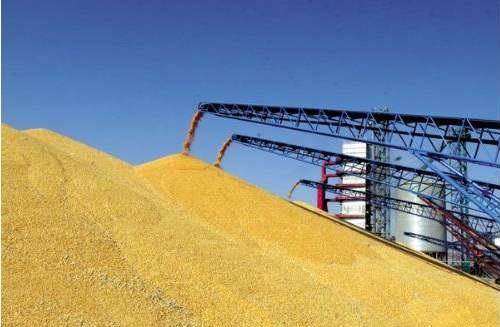 传中国收储1000万吨进口大豆,豆粕供需格局或被改变
