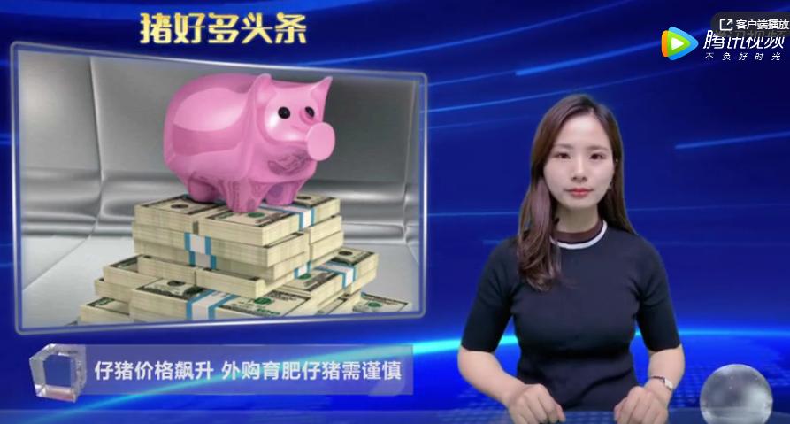 生猪价格下跌,仔猪价格不降反升,养殖户高价购仔猪育肥需谨慎!