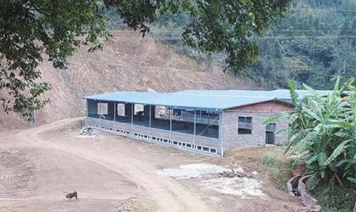 温氏集团在东安兴建年出栏50万头养猪场,预计总投资9亿元
