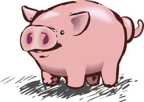 山东猪价降幅明显收窄,或已到达止跌时点