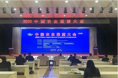 从世界粮农总干事屈冬玉讲话看中国生猪产业发展趋势