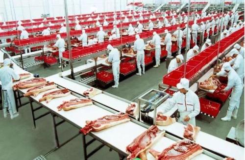 生猪越杀越少,拟投10亿在东北养50万头猪,双汇这次动真格了!