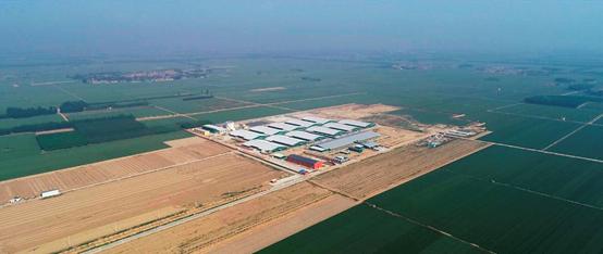 2019年生猪出栏355万头,这家畜牧养殖龙头企业拿5个亿做环保