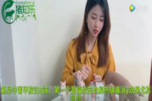 猪场常用的清热解毒产品:福欣安、福乃达!