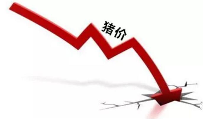 猪价连连下跌养殖端信心受损,但该淡定的还是得淡定!