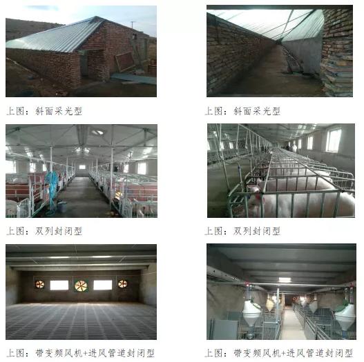 中国猪舍设计建造现状