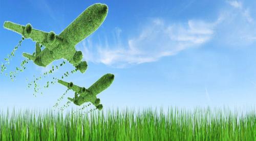 国务院发布关于2009年促进农业稳定发展农民持续增收的若干意见