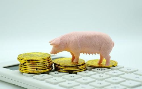 生猪期货上市在即,浅谈背景及影响
