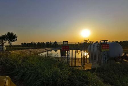 牧原股份南阳养殖分厂污水直排耕地污染白河?当地调查认为不属实