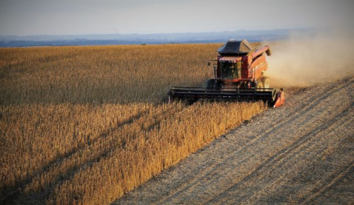 世界第一大豆出口国巴西:有信心维持对华大豆出口
