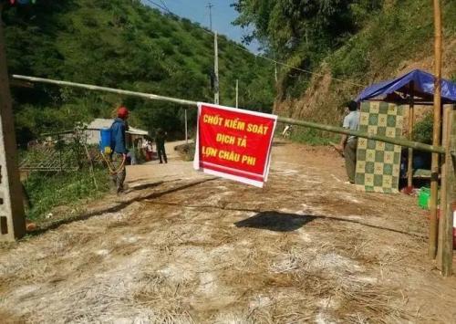 越南多个省份重新爆发非洲猪瘟!养猪,一个并不轻松的话题
