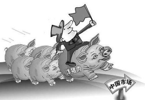 40200吨!中国买家向美国订购猪肉,猪肉进口格局或被疫情改变