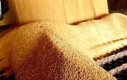 5月12日全国豆粕价格行情表,豆粕价格持续性下跌,贵州地区最为明显!