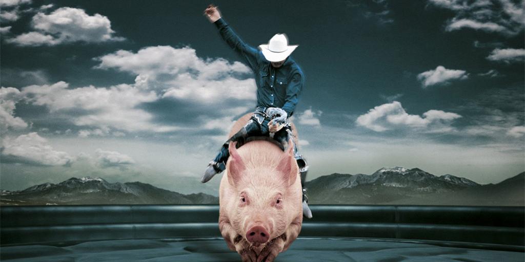 """遭遇重重考验,养猪企业如何应对?""""尖子生""""开出三剂良方"""