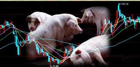 生猪期货分析:了解期货你需要知道(一)