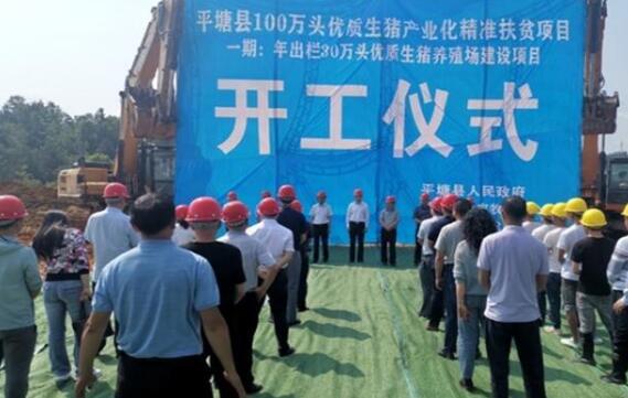 """贵州65个重点项目涉及养殖、屠宰及精深加工等,将带动70万人增收:生猪产业""""全链条"""" 群众就业在链上"""
