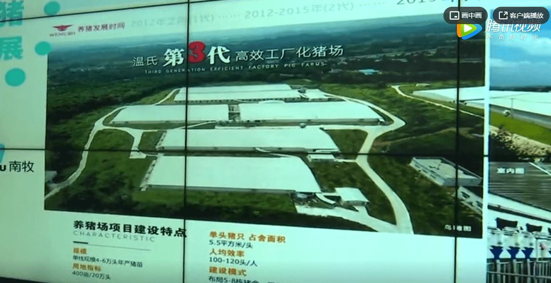 投资32亿!这家企业将在廉江打造现代高效生猪养殖一体化项目