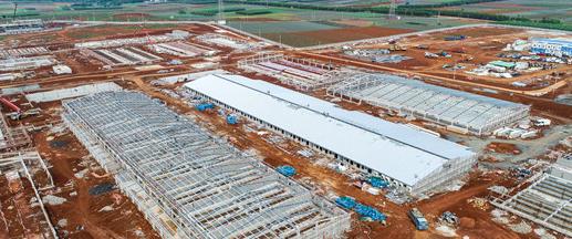 广东徐闻:30亿元生猪产业链项目投产——为其各地项目实现智慧养殖提供了样本示范