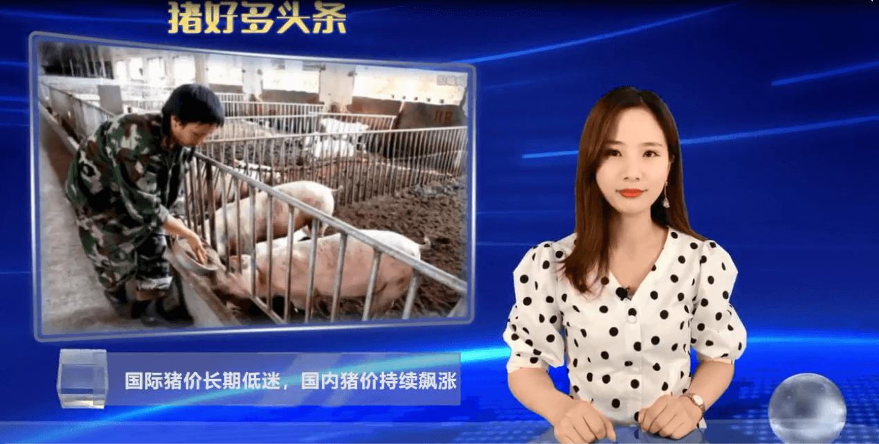 国际猪价长期下跌!国内消费低迷,猪价是不是也将迎来下跌周期?