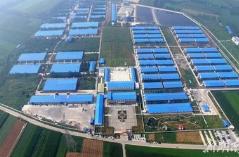 南京栖霞区118亩现代化生猪养殖基地6月底投产