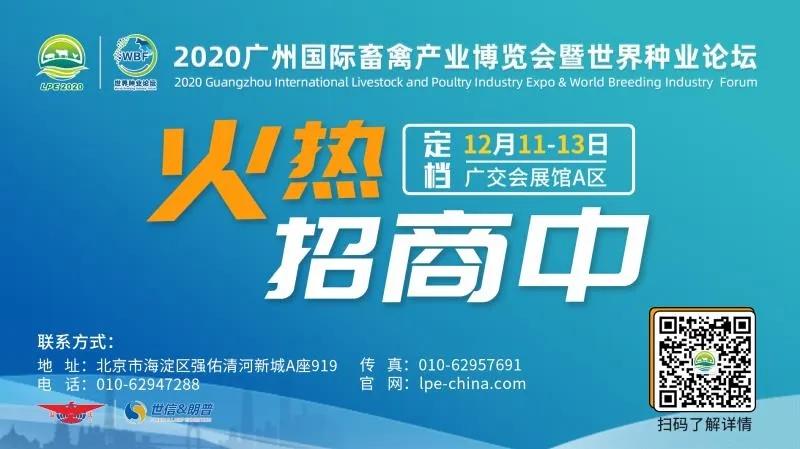 LPE2020线上展览直通车,线上先相见,线下更来电!