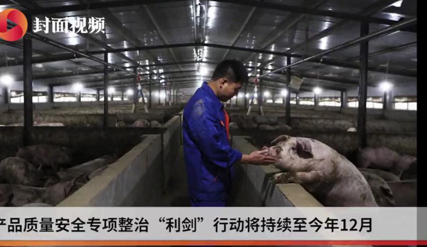 农业农村部部署农产品安全专项整治 重点打击猪肉养殖违法用药