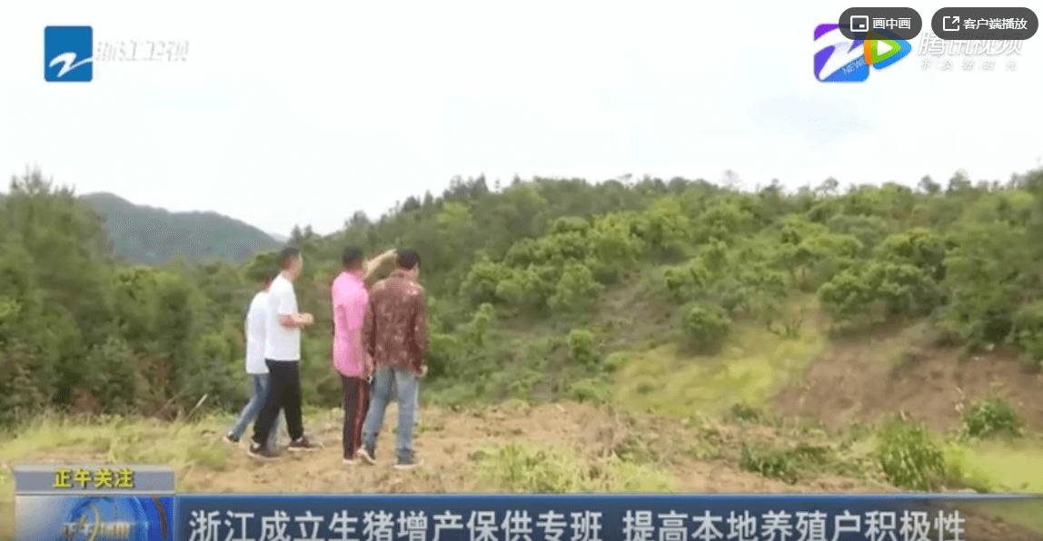 浙江成立生猪增产保供专班 提高本地养殖户积极性