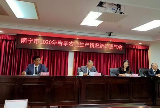 南宁市2020年春季农业生产情况新闻发布会现场。