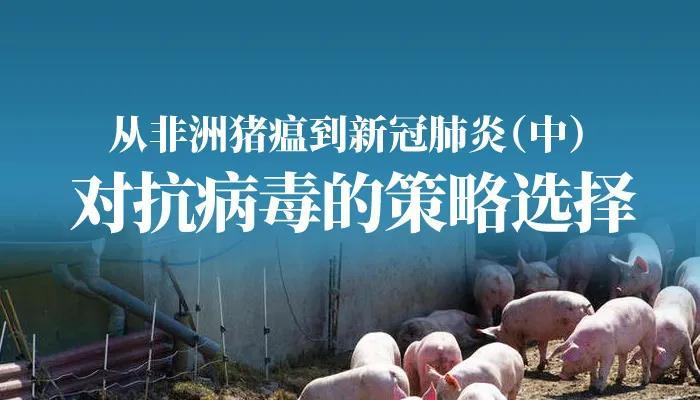 唐朝:从非洲猪瘟到新冠肺炎(中)对抗病毒的策略选择