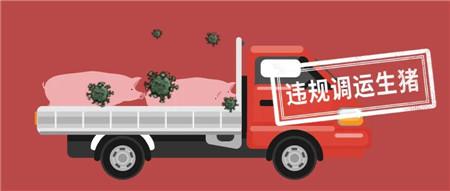又是偷运惹的祸,政府再次严查运输车了!您还不重视吗!