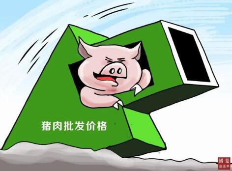 猪肉降价,国内猪肉供求关系将由偏紧趋向基本平衡