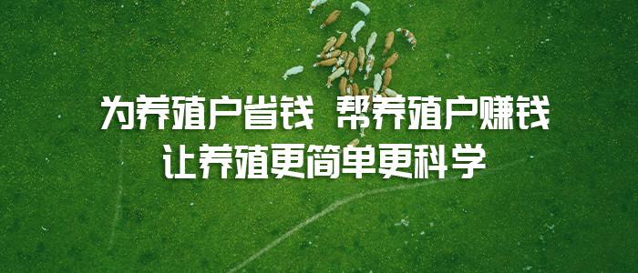 """""""禁抗令""""下月实施,联农会助力养殖户绿色科学养殖"""