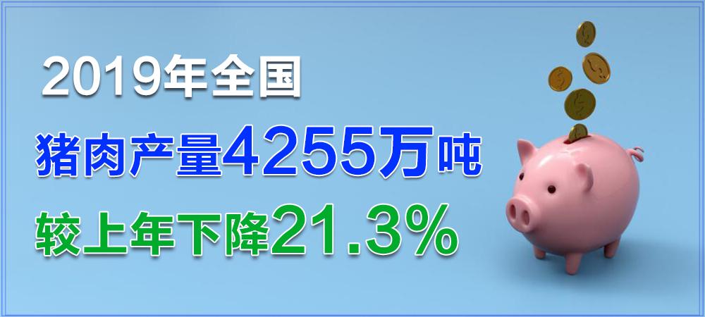 31省猪肉产量、出栏量公布!全国猪肉产量4255万吨,下降21.3%!