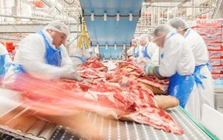 肉联厂病毒温床