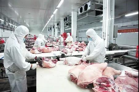 一边暂停进口一边向市场投入2万吨!进口冻猪肉还能吃吗?