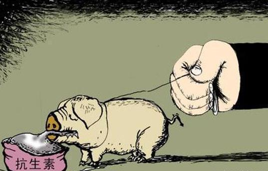 """7月饲料""""禁抗令""""正式施行,对当前的养猪业和猪价有何影响?"""