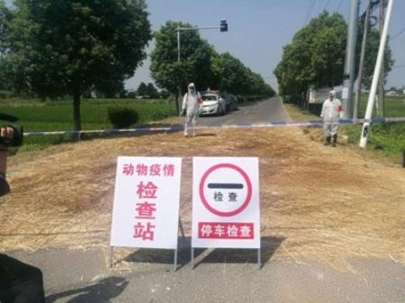 广西、云南警惕!越南非洲猪瘟抵近中越边境