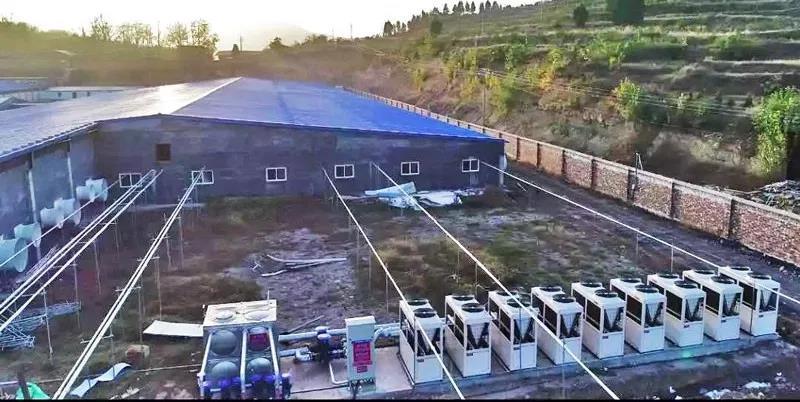 """警惕!恶意价格战!每年22亿元前景的猪场热泵采暖遭遇""""一窝蜂"""""""
