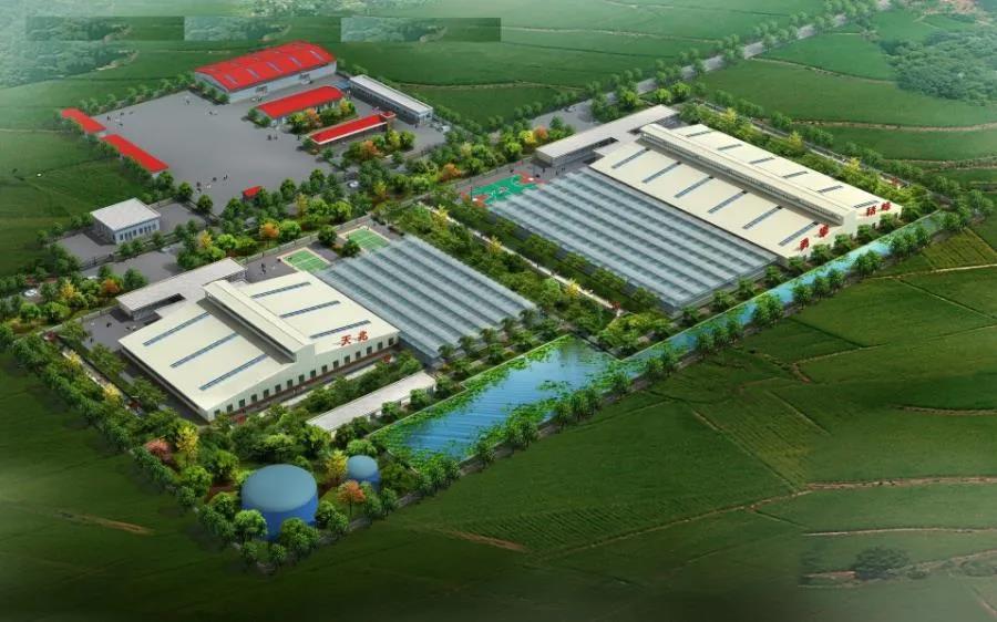 生猪养殖上市公司再掀扩产热潮!新希望、牧原、正邦再砸230亿养猪!