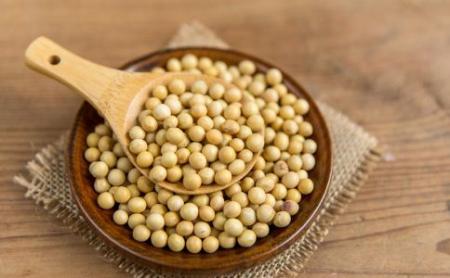 7月3日全国豆粕价格行情,全国豆粕价格上涨明显!局地暴涨!