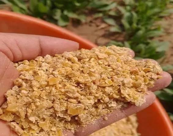 7月5日全国豆粕价格行情,国内进口大豆到港居高不下,今日均价上涨!